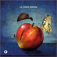 Carlo Tosetti - La crepa madre - Pietre Vive Editore, 2020